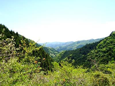 都民の森も行きたいな.jpg
